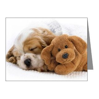 > China Note Cards > SHIH TZU SLEEPING PUPPY Note Cards (Pk of 20