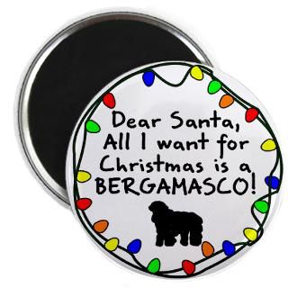 Bergamo Shepherd Dog Fridge Magnets  Bergamo Shepherd Dog
