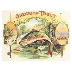 Speckled Trout Cigars Wall Art Poster