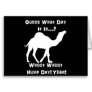 White Hump Day Camel Greeting Card