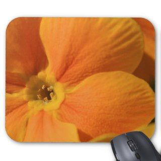 Orange primrose flower, Pecs, Hungary Mouse Pads