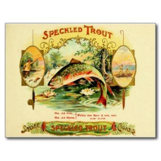 Speckled Trout Cigar Case Post Cards