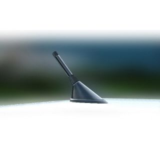 Antenna Aerial Stubby Bee Sting Renault Megane Sport Black Carbon
