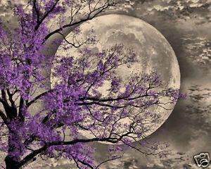 Brown Purple Tree Moon Wall Art Home Interior Decor Picture
