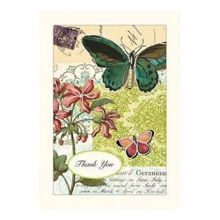 cavellini & co flora and fauna thank you cards in tin by lytton and lily vintage home & garden