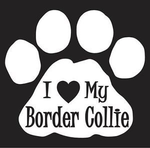 Border Collie Die Cut Dog Paw Print Vinyl Decal Sticker