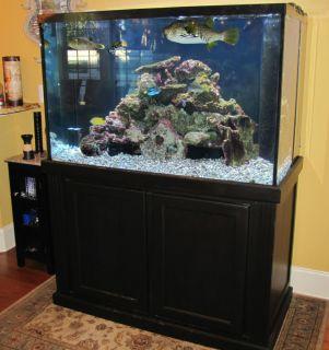 Reduced for quick sale 265 gallon saltwater reef aquarium for 150 gallon fish tank dimensions