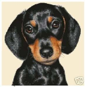 Dachshund Dog Complete Counted Cross Stitch Kit