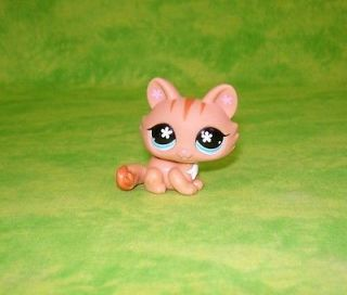 Littlest Pet Shop 649 Kitten Kitty Cat  Adorable