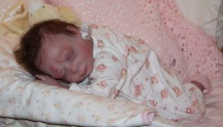 Lena Reborn Doll Sculpted and Reborned by Kimberly Lasher What A Treasure