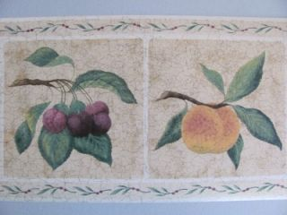 Crackle Fruit Tuscan Style Country Theme Kitchen Prepasted Wallpaper Wall Border