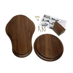 Hollow Mount Deluxe Solid Walnut European Skull Mount Display Kit USA