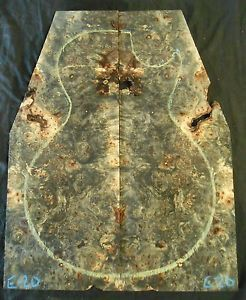 Buckeye Burl Guitar Bookmatch Set Musical Luthier Knife Scales Pistol Grip E 20