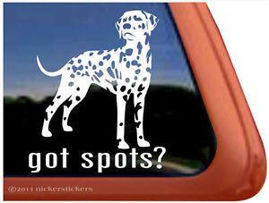 Got Spots Dalmatian Dog High Quality Auto Car Truck Window Decal Sticker