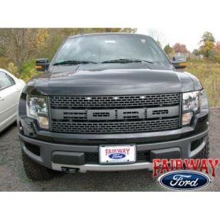 09 thru 14 F 150 Genuine Ford Parts Raptor SVT Tailgate Emblem