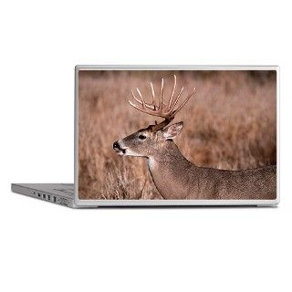 Whitetail Deer Buck Laptop Skin by akwildlife