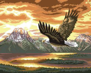 Flying Eagle Acrylic (2013 New DIY paint by number 16*20'' kit) Arts, Crafts & Sewing