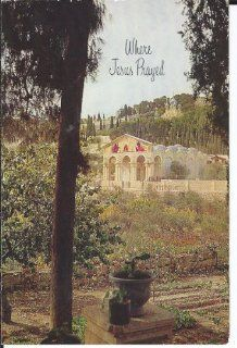 "KEEPSAKE CHRISTMAS CARD FROM THE HOLY LANDS""WHERE JEASU PRAYED"" WITH REAL OLIVE LEAF FROM THE GARDEN OF GETHSEMANE (NO ENVELOPE): Everything Else"