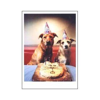Dogs In Party Hats Birthday Card: Toys & Games