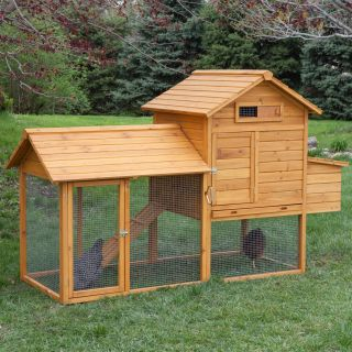 Boomer & George Tree Tops Chicken Coop   Chicken Coops