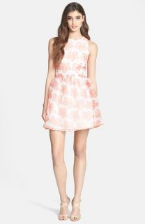 BB Dakota Daisy Print Organza Fit & Flare Dress