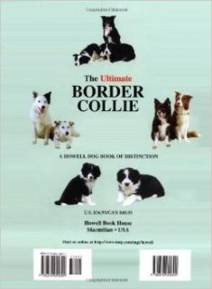 The Ultimate Border Collie: Allison Hornsby: 9780876055892: Books