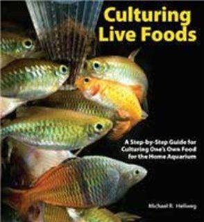 Tfh Nylabone ATFTS421 Culturing Live Foods
