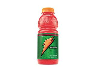Gatorade                                 Sports Drink, Fruit Punch, 20 oz. Plastic Bottles, 24/Carton